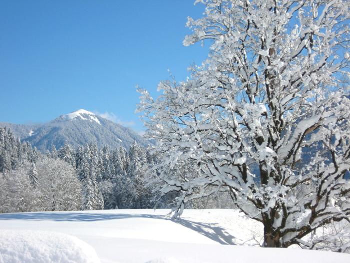 In der kalten Jahreszeit entwickelt die schneeverwöhnte Jachenau einen besonderen Zauber