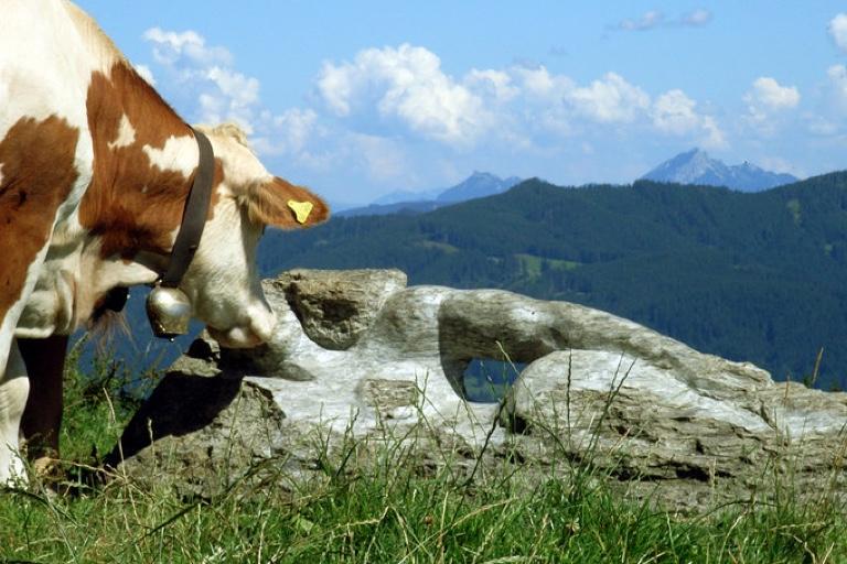 Wandern mit AHA-Effekt | Steinjungfrau