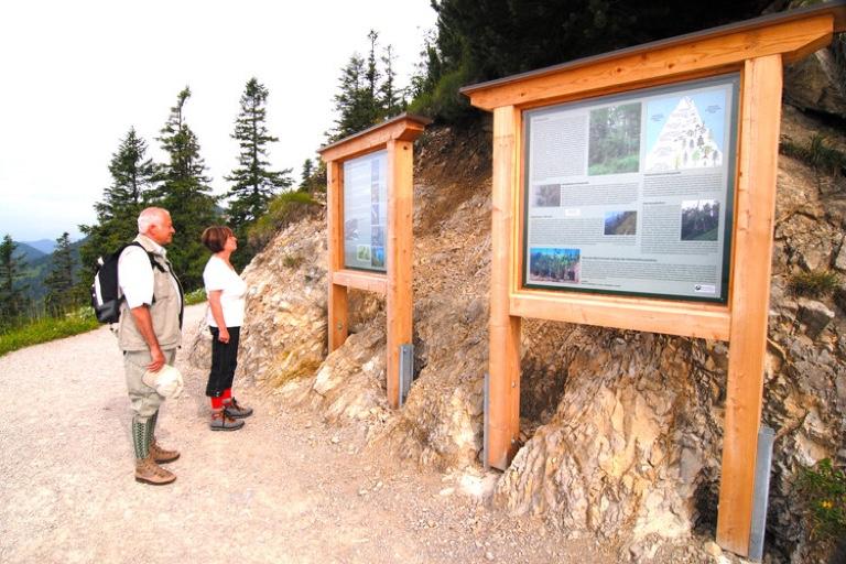Wandern mit AHA-Effekt | Naturlehrpfad Walchensee